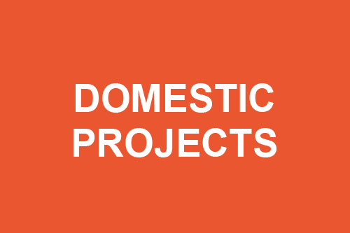 Donate for our domestic programs
